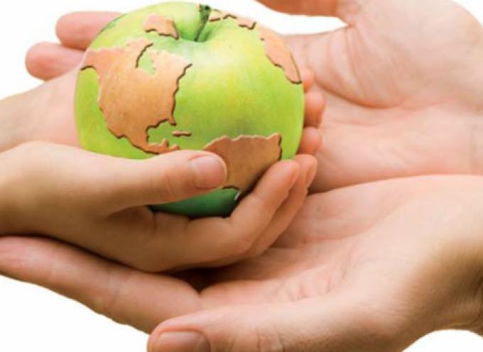 50 simples consejos para disfrutar de un estilo tu vida más sostenible