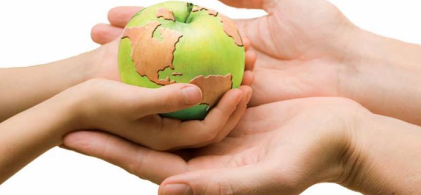 El Consejo Económico y Social alerta en un informe de la necesidad de impulsar la Ley de Desarrollo Sostenible de 2007 con el fin de tener una política rural de Estado