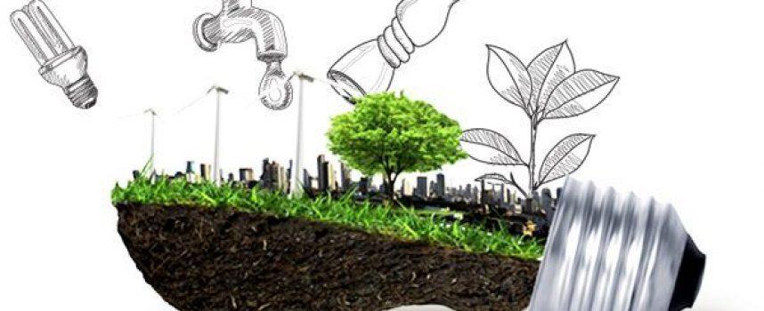 El 63% de los emprendedores prioriza el impacto social y ambiental en sus negocios
