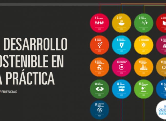 Libro gratuito: El desarrollo sostenible en la práctica