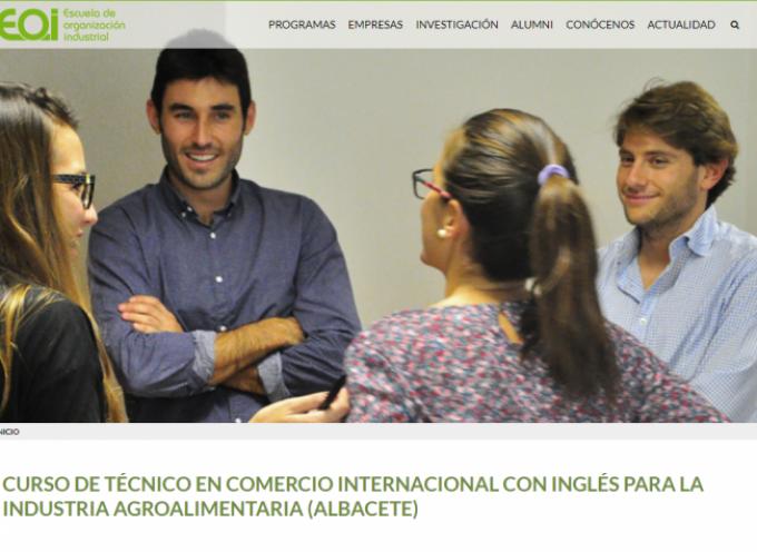 CURSO DE TÉCNICO EN COMERCIO INTERNACIONAL CON INGLÉS PARA LA INDUSTRIA AGROALIMENTARIA (ALBACETE)