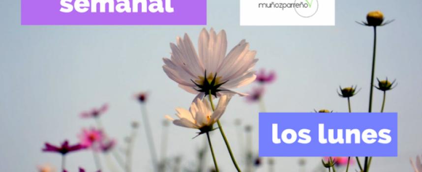 """Resumen semanal. Actualizado los #lunes – Las últimas publicaciones """"compartir información y crear sinergias""""."""