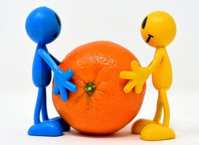 13 profesiones ineludibles para ser competitivos en el mercado laboral