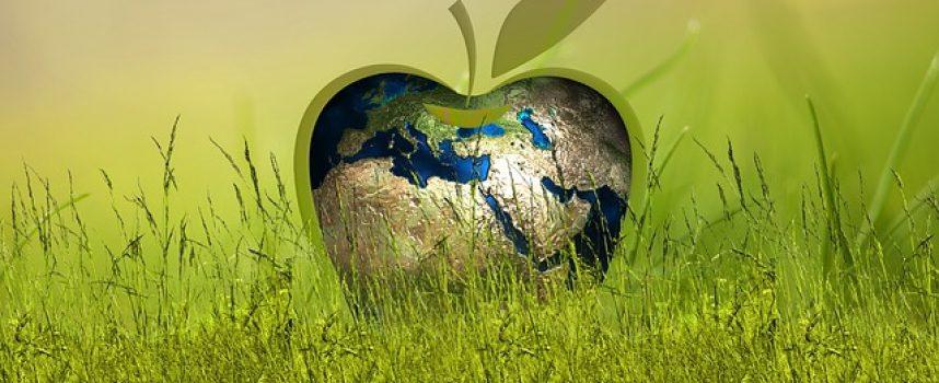 La economía del bien común, economía alternativa solidaria y sostenible