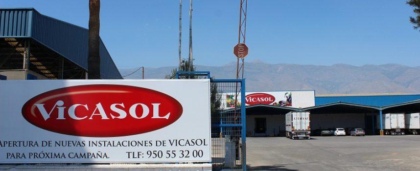 La cooperativa Vicasol ofrece empleo