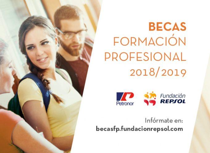 100 becas remuneradas de Formación Profesional de Repsol y Petronor | Plazo 16/10/2018