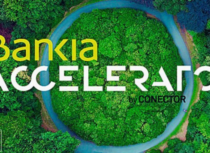Ya puedes inscribirte en el programa de aceleración de Bankia by Conector | Plazo: 16/09/2018
