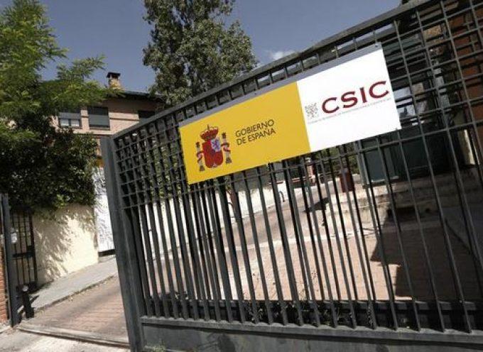 El CSIC ofrece 90 contratos en prácticas para titulados y técnicos superiores | Plazo 17/09/2018
