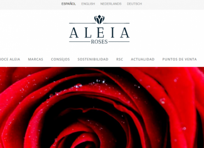 La empresa Aleia Roses aumentará la plantilla hasta 500 trabajadores