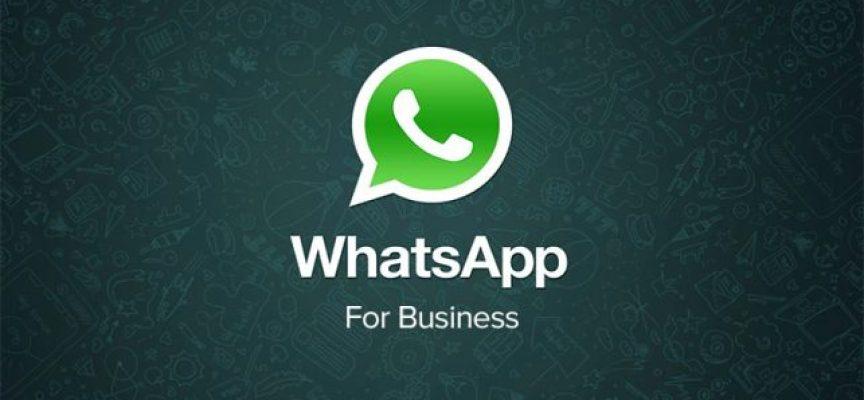 Aplicaciones de Whatsapp Business para las pymes