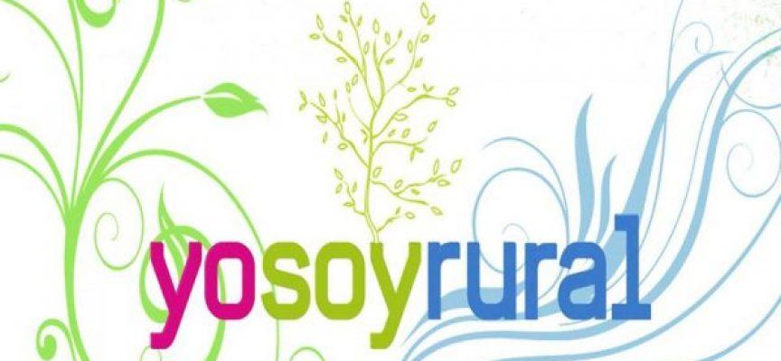 Proyectos empresariales o iniciativas sociales que han logrado diversificar la economía rural en Asturias