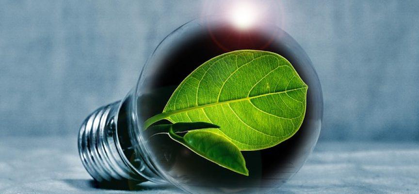 Ecoinnovación, el nuevo camino a seguir para el sector tecnológico