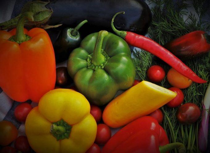 Oportunidades de negocio para los convencidos de que el futuro es vegano