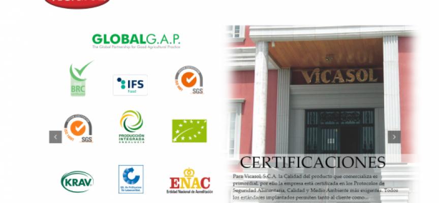 El proyecto de VICASOL en el Ejido creará nuevos empleos en la zona