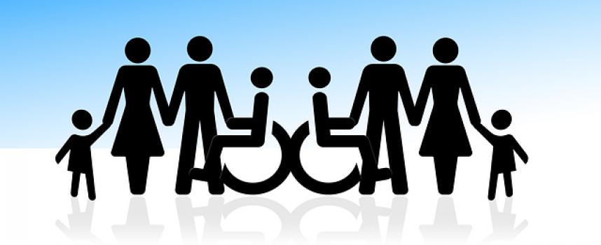Discapacidad en el CV: Sí o No