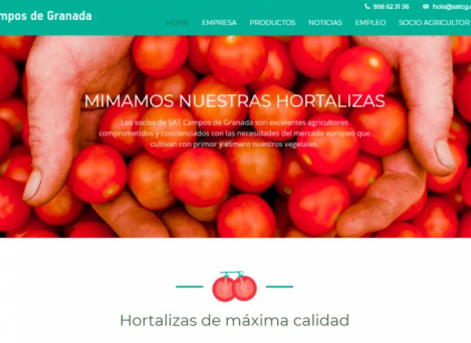 Bolsa para Manipulador, Mozo almacén, Limpiador y Mantenimiento en Granada