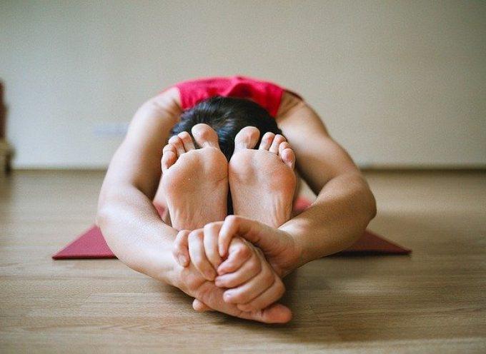 28 vídeos con ejercicios físicos, yoga y zumba para niños