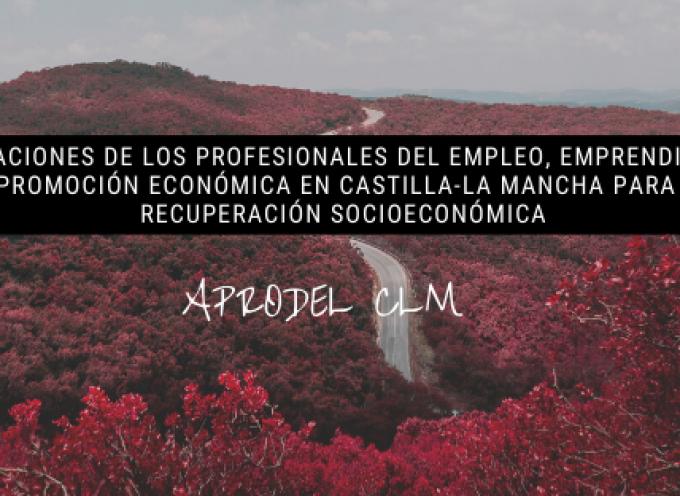 APORTACIONES DE LOS PROFESIONALES DEL EMPLEO, EMPRENDIMIENTO Y PROMOCIÓN ECONÓMICA EN CASTILLA-LA MANCHA PARA LA RECUPERACIÓN SOCIOECONÓMICA