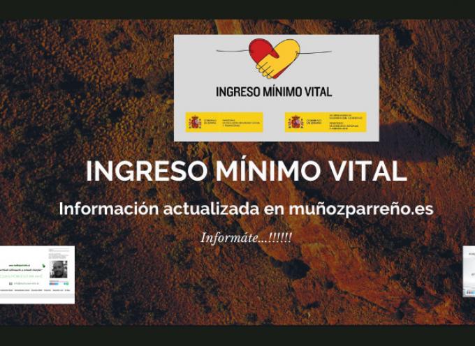 Iniciativas del INSS para facilitar los trámites de solicitud del Ingreso Mínimo Vital