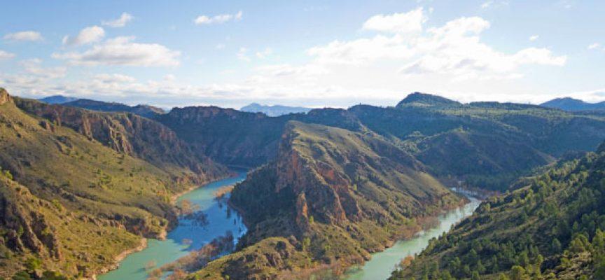 Tres proyectos empresariales crearán 350 puestos de trabajo en Albacete