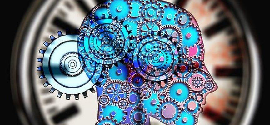 Desarrollan una app de entrenamiento cognitivo para reducir el impacto psicológico producido por el Covid-19