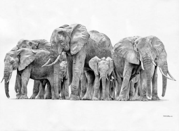 La iniciativa «Elefantes Solidarios» impulsa la empleabilidad de los mayores de 45