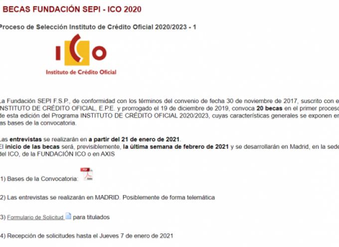 Becas remuneradas para Titulados Universitarios y Estudiantes en el ICO | Plazo 7 enero 2021