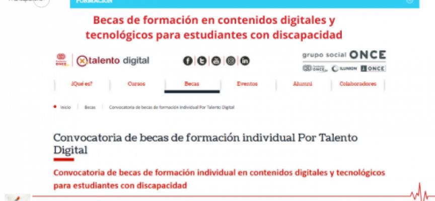 Becas de formación en contenidos digitales y tecnológicos para estudiantes con discapacidad