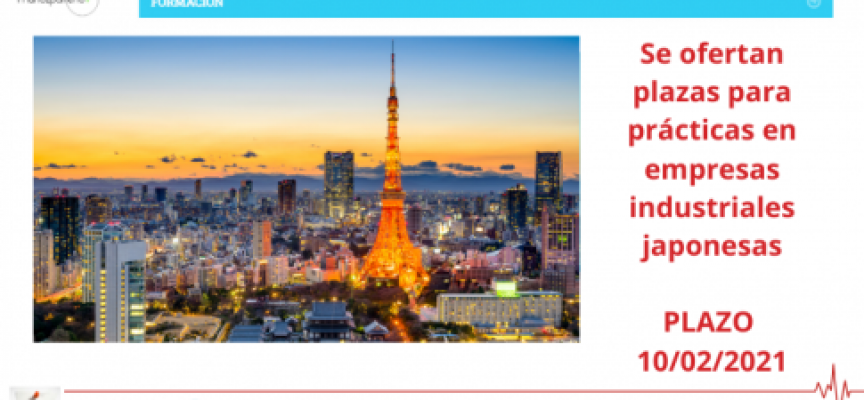 Se ofertan plazas para prácticas en empresas industriales japonesas