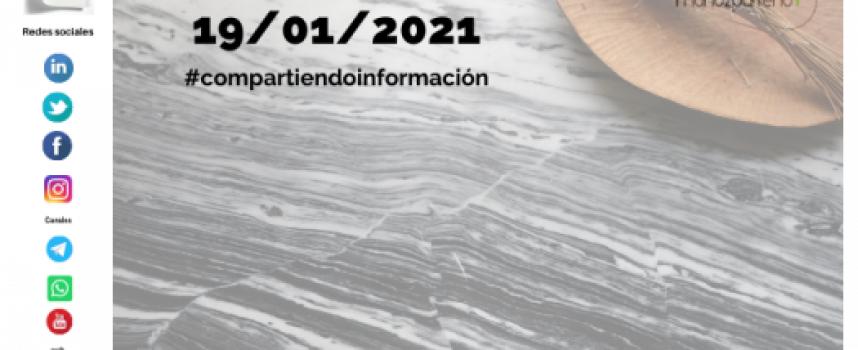 Boletín 4/2021 – #compartirinformacion |  martes 19 de enero de 2021