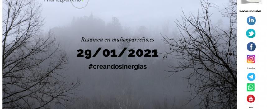Boletín 7/2021 – #creandosinergias viernes 29 de enero de 2021