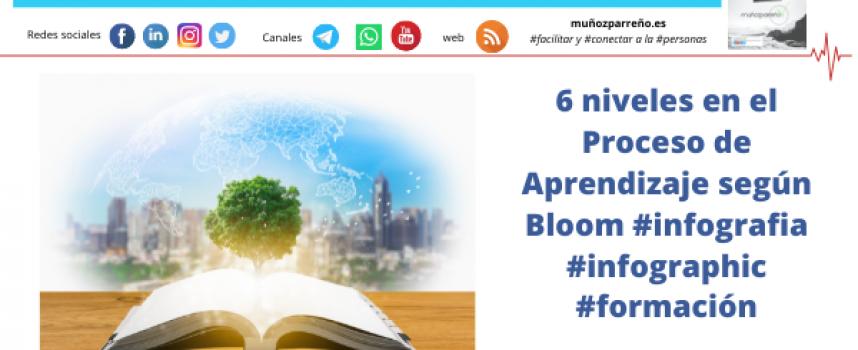 6 niveles en el Proceso de Aprendizaje según Bloom #infografia #infographic #formación
